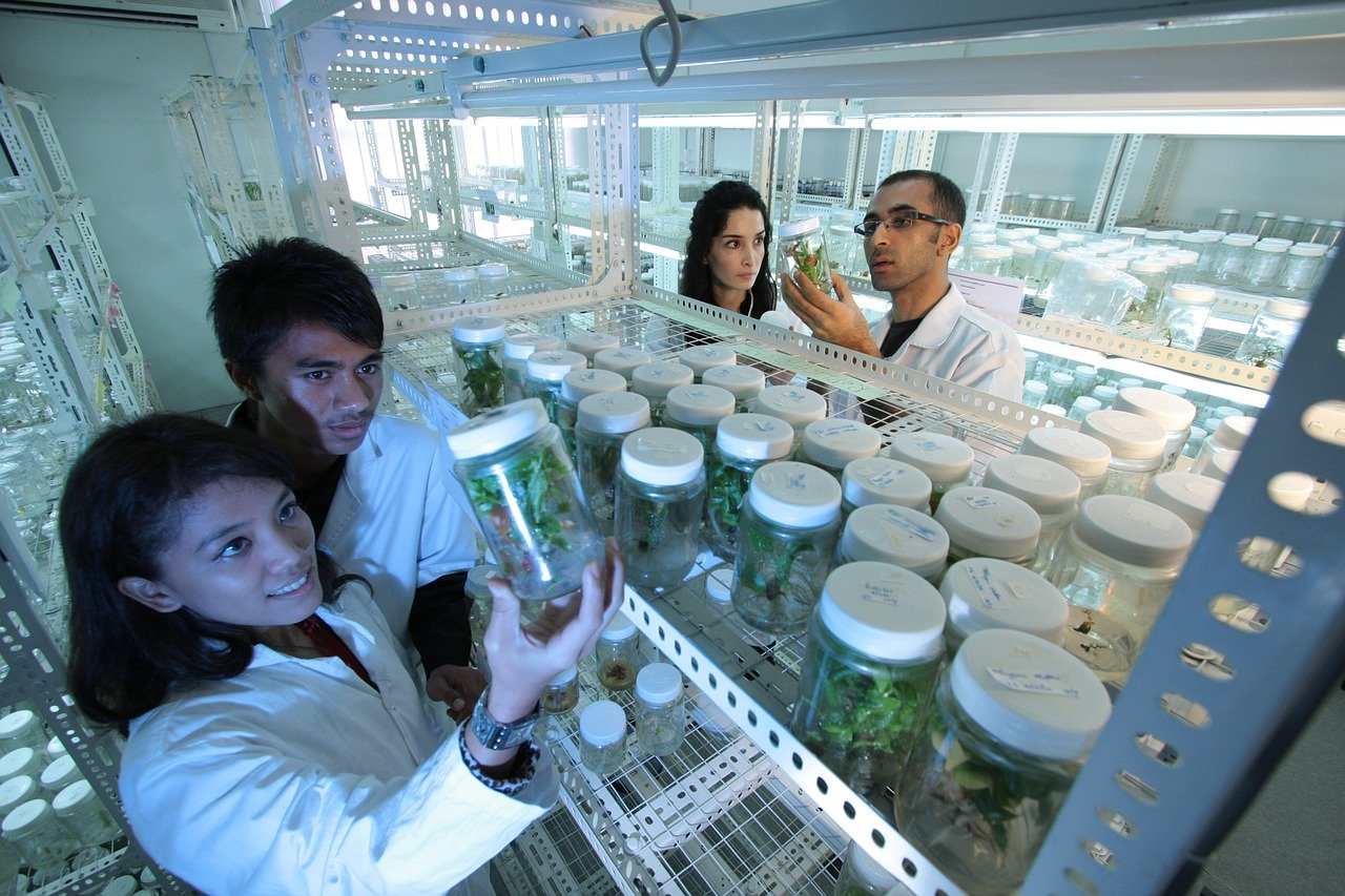 laboratory, scientists, research