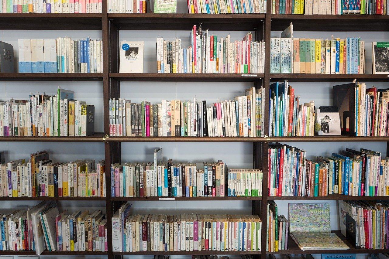 books, bookshelf, library